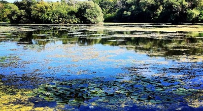 Photo of Lake Mallard Lake At Wehr Nature Center at United States