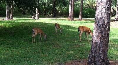 Photo of Park John Chesnut Park at 2200 E Lake Rd, Palm Harbor, FL 34685, United States