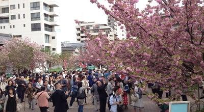 Photo of Trail 造幣局 桜の通り抜け at 北区天満1-1-79, 大阪市, Japan