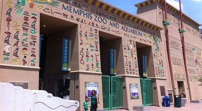 Photo of Zoo Memphis Zoo at 2000 Prentiss Pl, Memphis, TN 38112, United States