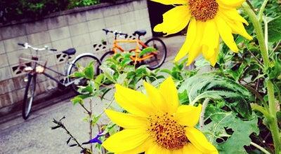 Photo of Park 碑文谷公園 at 碑文谷6-9-11, 目黒区 152-0003, Japan