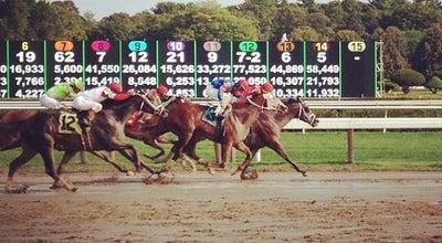 Photo of Racetrack Saratoga Race Course at 267 Union Ave, Saratoga Springs, NY 12866, United States