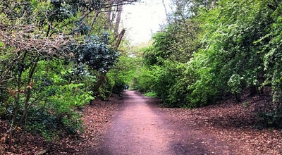 Photo of Trail Parkland Walk (Finsbury Park to Crouch End Section) at Parkland Walk, London N4 / N8, United Kingdom