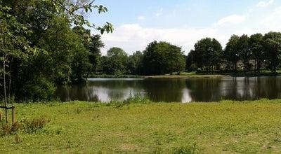 Photo of Lake De Kleine Melanen at Melanendreef 210, Bergen Op Zoom, Netherlands