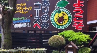 Photo of Theme Park ありのみコース at 大町226-1, 市川市 272-0801, Japan