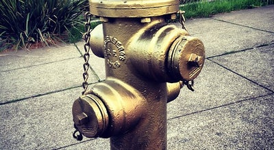 Photo of Monument / Landmark Golden Hydrant at Church St, San Francisco, CA 94114, United States