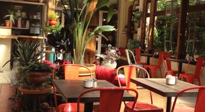 Photo of Moroccan Restaurant Cafe Mogador at 133 Wythe Ave, Brooklyn, NY 11249, United States