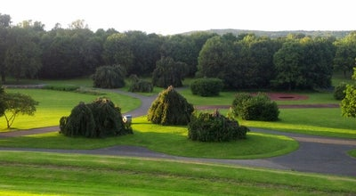 Photo of Park Freizeitpark Rheinaue at Herbert-wehner-platz, Bonn 53113, Germany