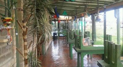 Photo of South American Restaurant El Despacho at Variante Chia Cota, Chia 250002, Colombia
