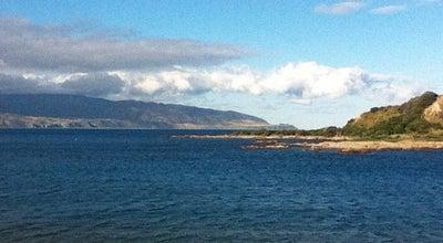 Photo of Beach Island Bay Beach at The Esplanade, Wellington, New Zealand