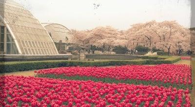 Photo of Botanical Garden 京都府立植物園 (Kyoto Botanical Garden) at 下鴨半木町, 京都市 606-0823, Japan
