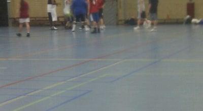 Photo of Basketball Court Karekiet sporthal at Karekietpark, Purmerend, Netherlands