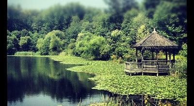 Photo of Lake Bright Pond at United States