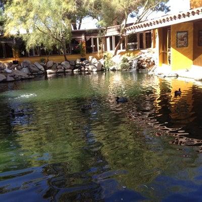 Best Family Restaurants in Cave Creek, AZ - Winnie