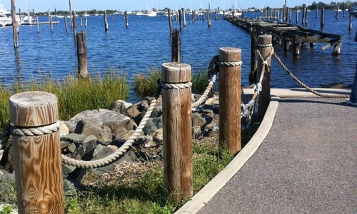 Seaside Wildlife Nature Park Staten Island Ny