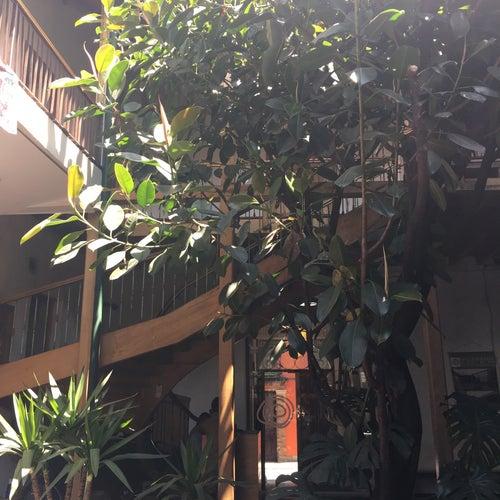 Escuela Taller de Bogotá Sede Casa Venados en Bogotá
