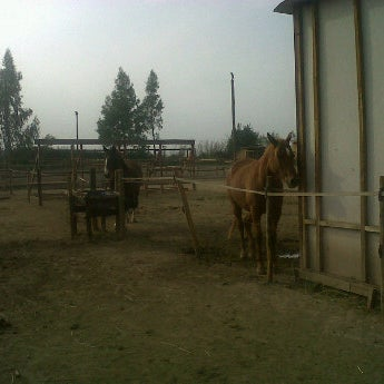 Centro Ecuestre Equus en Santiago
