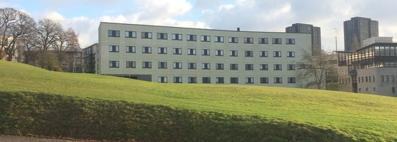 Эссекский университет презентация