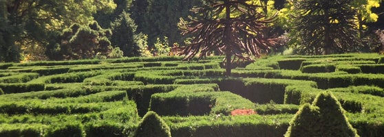 A Gorgeous Botanical Garden In The Centre Of Vancouver. You Would Never  Know What Is Behind Its Doors. Plants And Flowers From All Over The World  And Even A ...
