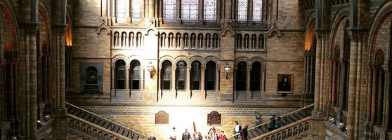 Natural History Museum S Lodge Stock Image C010 0479 Science