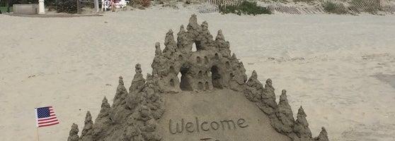 Best Beach In San Diego To Find Sand Dollars