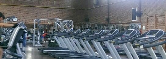 Polideportivos fitness hortaleza gimnasio en madrid for Gimnasio hortaleza fitness