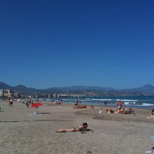 playa muchavista algas