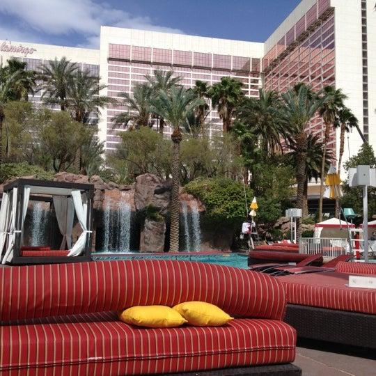 Photo taken at Flamingo GO Pool by Alexis B. on 5/26/2012
