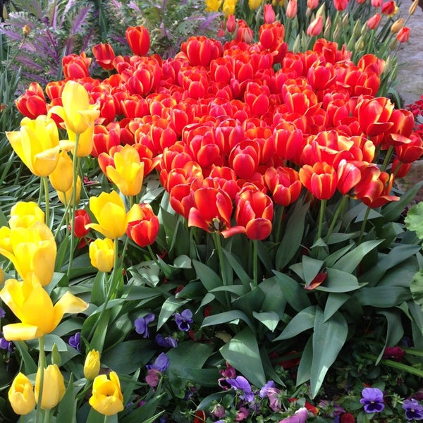 Foto tirada no(a) Dallas Arboretum and Botanical Garden por Deena R. em 3/28/2013