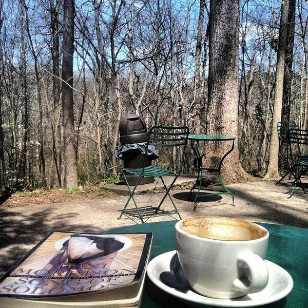 Caffe driade coffee shop - Cafe driade ...