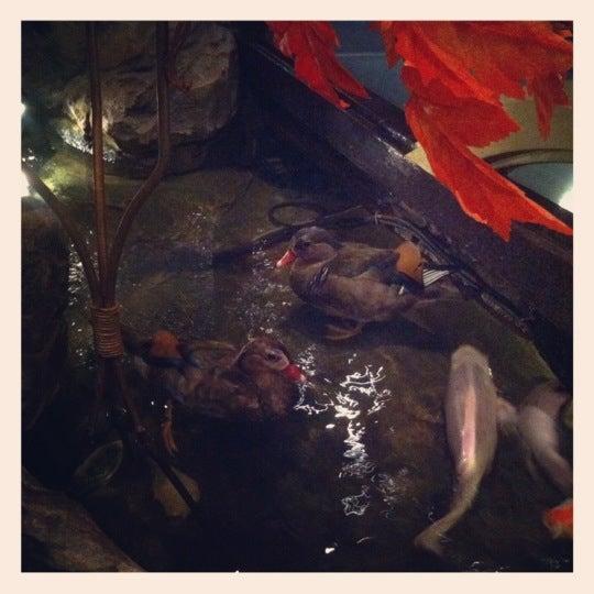 Снимок сделан в Храм дракона пользователем Olga L. 10/20/2012