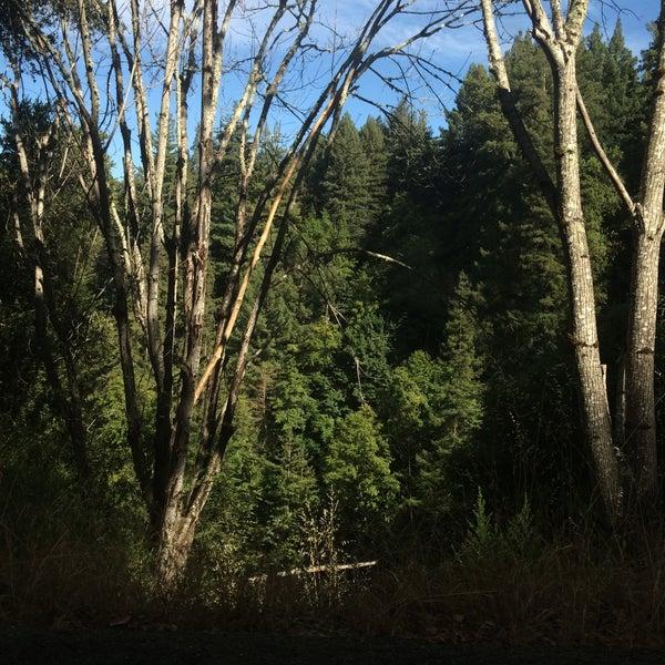 Photo taken at Santa Cruz Mountains by liza s. on 6/20/2016