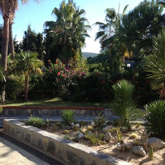 11/11/2012 tarihinde Ender A.ziyaretçi tarafından Pine Bay Holiday Resort'de çekilen fotoğraf