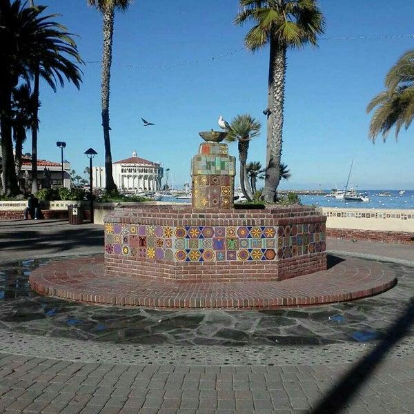 Photo taken at Santa Catalina Island by Airalin B. on 5/13/2013