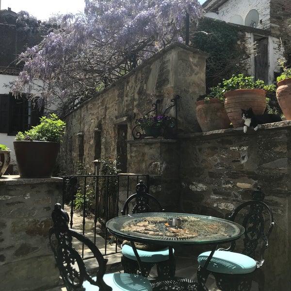 3/31/2018 tarihinde Ayşe Y.ziyaretçi tarafından Üzüm Cafe'de çekilen fotoğraf