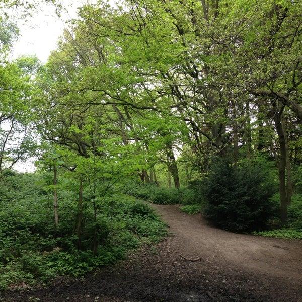 5/19/2013 tarihinde Bill G.ziyaretçi tarafından Hampstead Heath'de çekilen fotoğraf