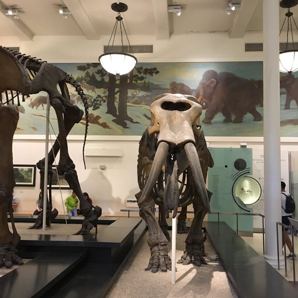 Photo taken at David H. Koch Dinosaur Wing by LonelyBob a. on 7/30/2017