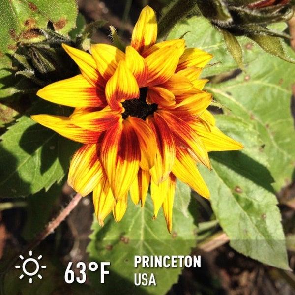 Photo Taken At Nassau Park Pavilion By Khrt W On 10 15 2012
