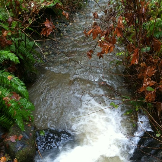 Photo taken at Carkeek Park by Rae Y. on 11/23/2012