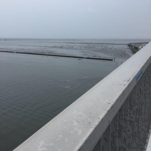Photo taken at 中の島大橋 by Hideharu O. on 6/5/2016