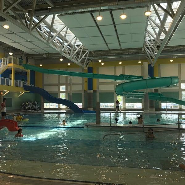 Douglas Snow Aquatic Centre Willowdale 39 De Havuz 39 Da Foto Raflar