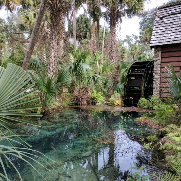 Silver Springs Silvers: Campground In Silver Springs
