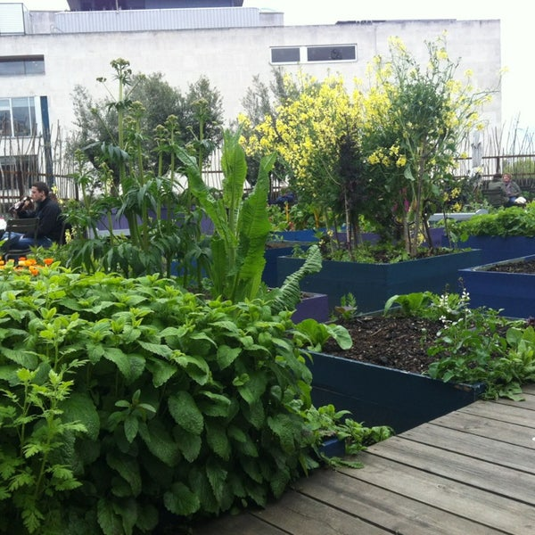 Garden Centre: Southbank Centre Roof Garden, Café & Bar