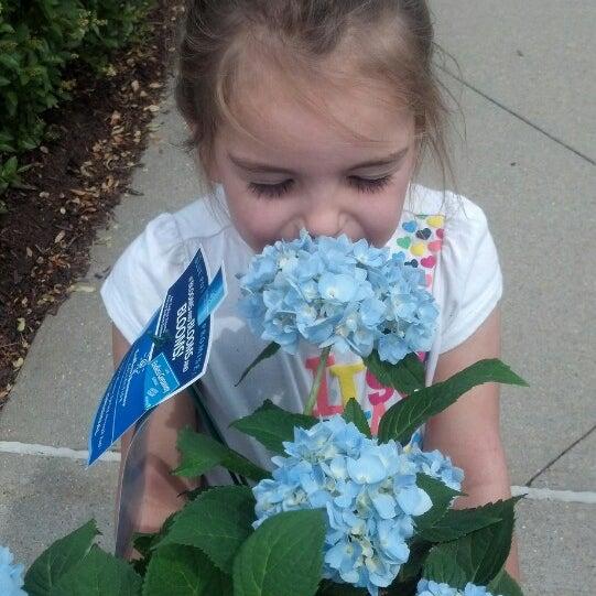 Das Foto wurde bei Walmart von Kayleigh O. am 6/2/2013 aufgenommen