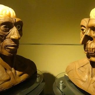 Foto tomada en Universum, Museo de las Ciencias por Juristas UNAM el 10/9/2012