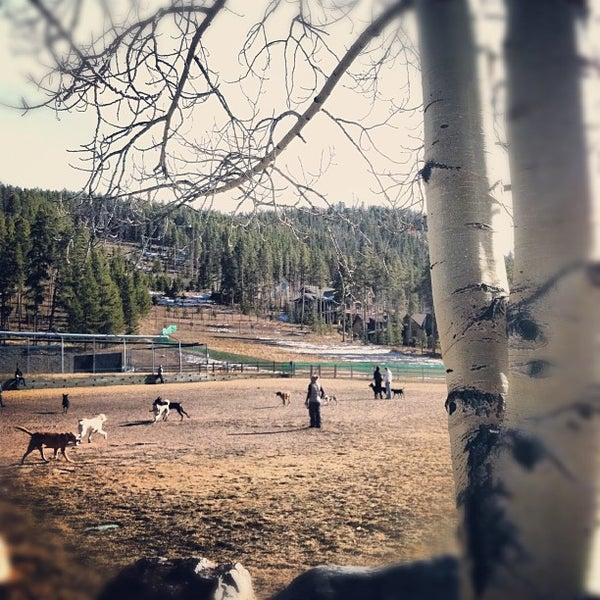 Photo prise au Carter Dog Park par Stacy S. le11/24/2012