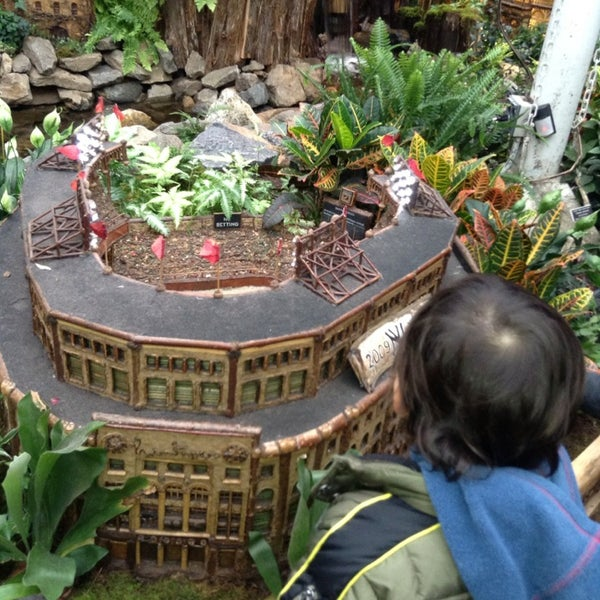 Photo taken at Enid A. Haupt Conservatory by Gigi T. on 1/12/2013