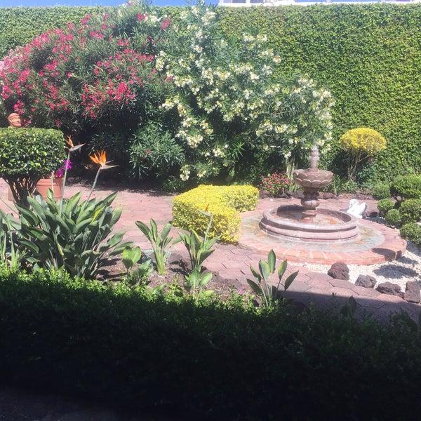 Un café con pastel. Te prestan un libro y tienes una hermosa vista al jardín.
