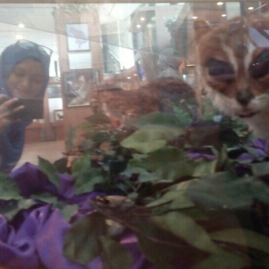 Photo taken at Muzium Kucing (Cat Museum) by Firzada A. on 10/10/2015