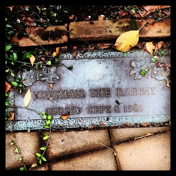 Photo taken at Church of the Holy Trinity (Episcopal) by Julie H. on 11/15/2013